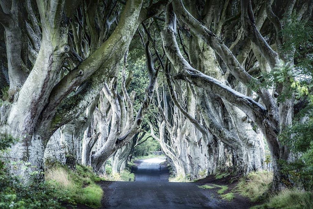 """Irlanda: percorso attraverso """"Il Trono di Spade"""""""